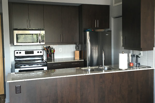 Condo kitchen before renovation picture